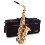 Elkhart 100AS Alto Saxophone