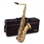 Elkhart ETS100 Tenor Saxophone